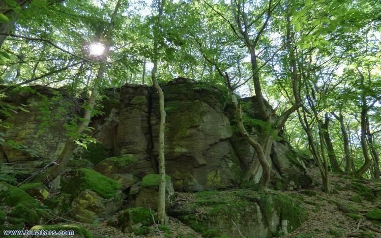 Kemence-kő